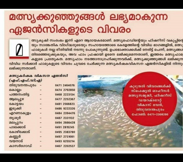fish farming in kerala