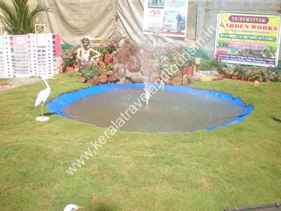 Gardening Garden Plants Home Garden Kerala India Resource How To